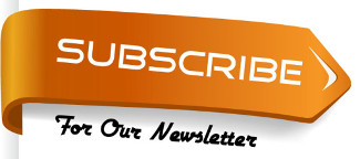 Spanish Learner Newsletter